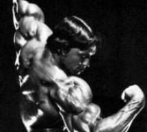 Arnie: Z rakouského dubu guvernátorem