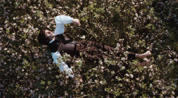 Alistair Fox: Jane Campion. Authorship & Personal Cinema