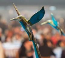 FINÁLE 2014: (nejen) slavnostní zakončení