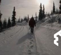 Zlatá horečka na Yukonu ještě úplně neskončila