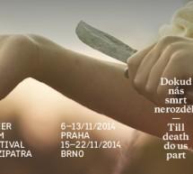 První vlaštovka brněnské části queer filmového festivalu Mezipatra