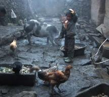 DAFilms uvádí: Wang Bing – krajina čínské každodennosti