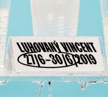 Unikum mezi festivaly: lázeňský švihák, multižánrový a multiletní –Luhovaný Vincent