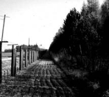 Nový dokument Karla Strachoty skvěle přibližuje fenomén emigrace