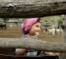 Oceňovaný dokument Země medu se vrací do omezené online distribuce na portálu DAFilms