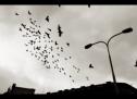 Dokumentární film Skutok sa stal přichází do kin a premiéru bude mít v bývalém Federálním shromáždění