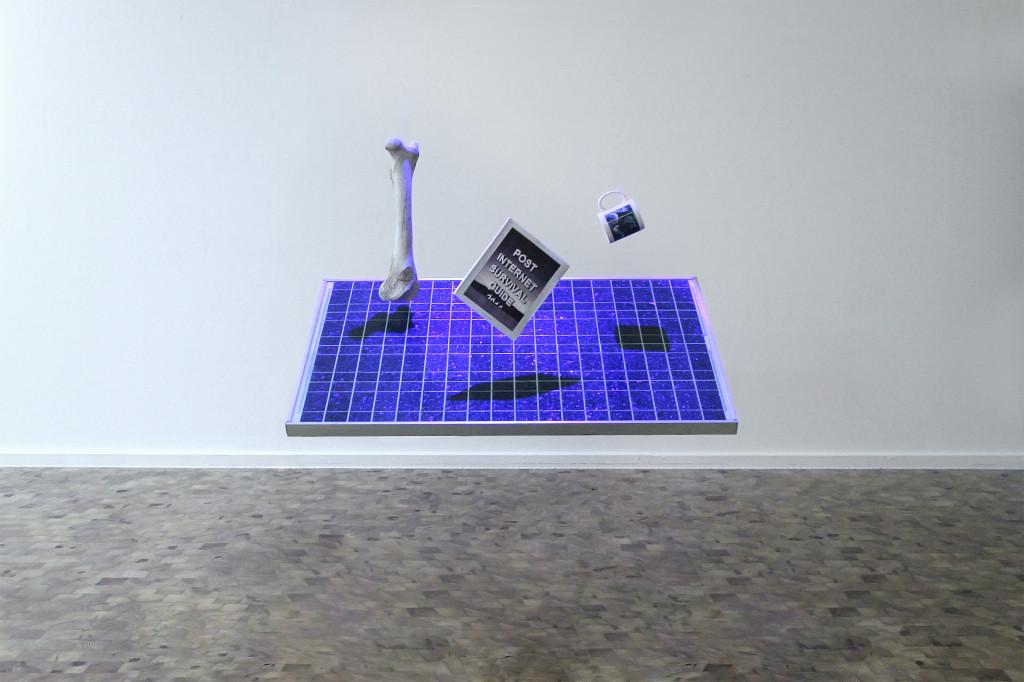 PISG-installation_courtesy katja novitksova